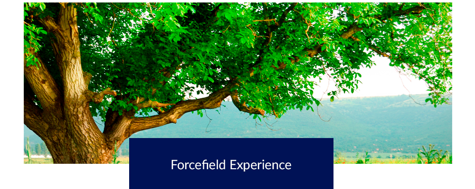 Forcefield Experience